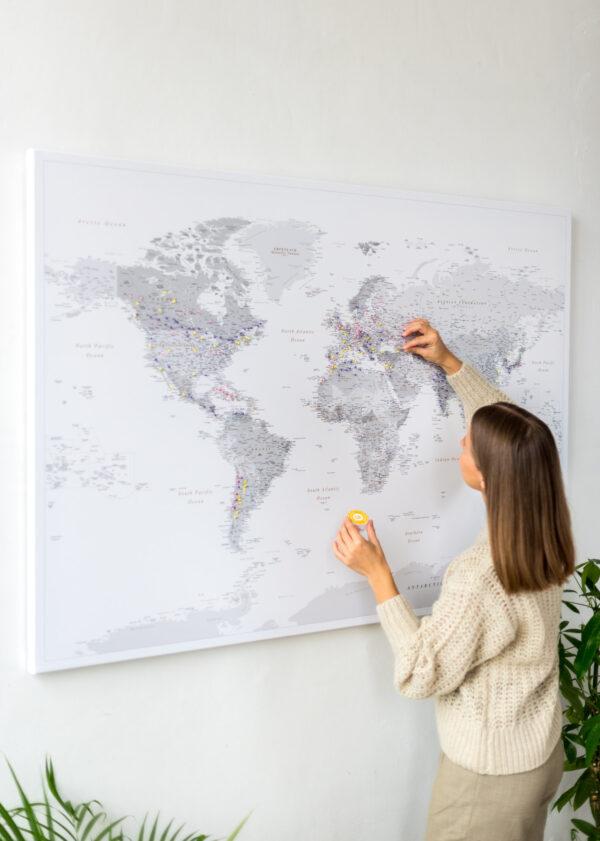gris carte geographique du monde
