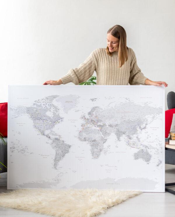 gris punaise carte du monde