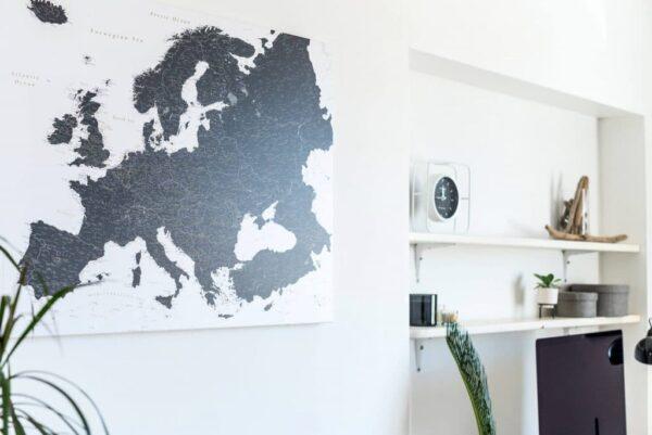 Carte avec épingles Noir et blanc (Détaillé) tripmap