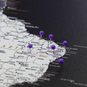 violet pushpins de carte Tripmap fr