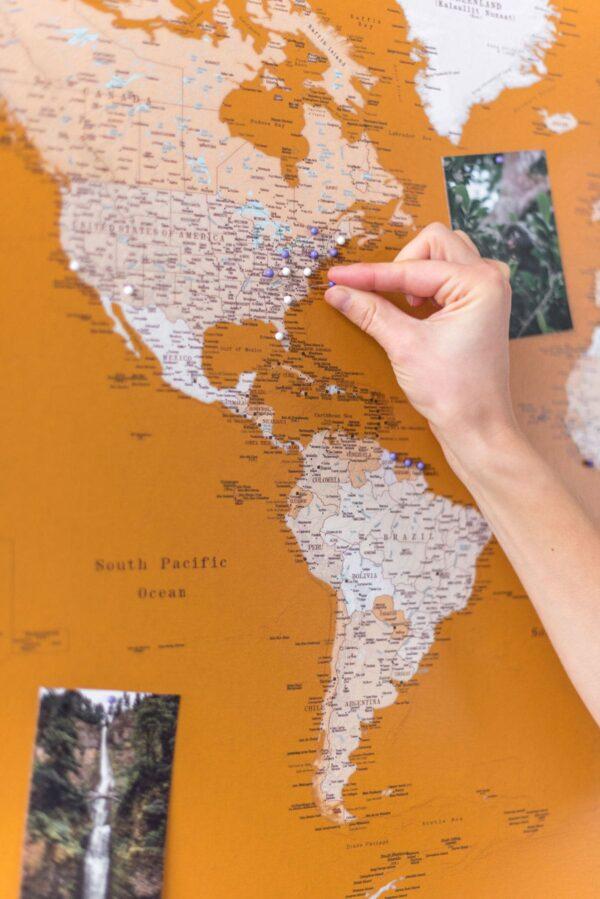 carte du monde voyage punaise miel
