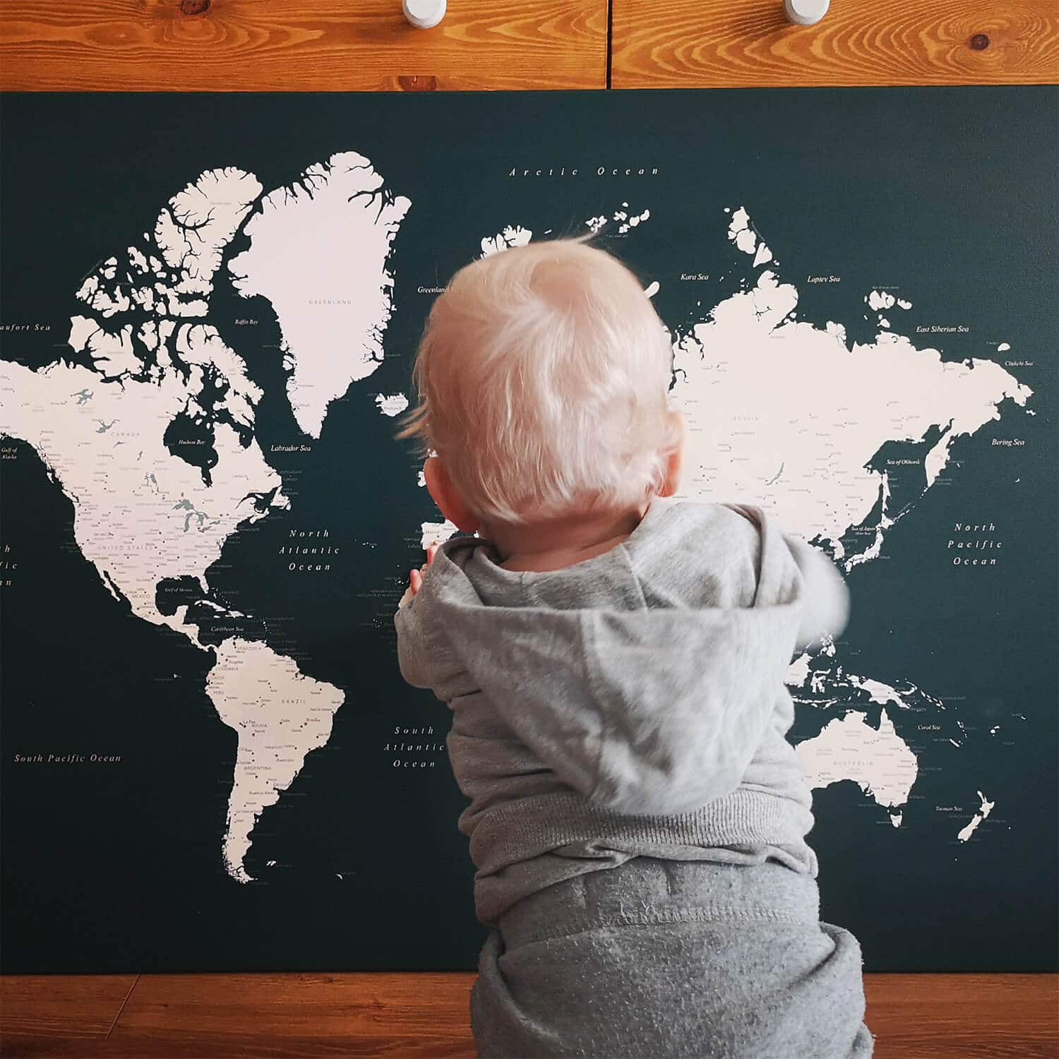 travel map with pins for kids