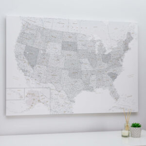 carte de l États Unis avec epingles Gris-Blanc -Détaillé