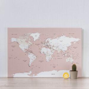 rose carte du monde voyage punaise